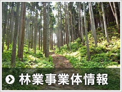 林業事業体情報